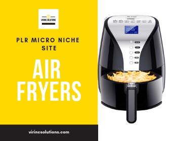 PLR Micro Niche Site