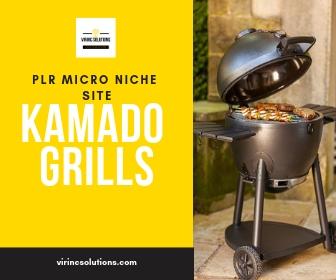 Buy Niche Website - Kamado Grills