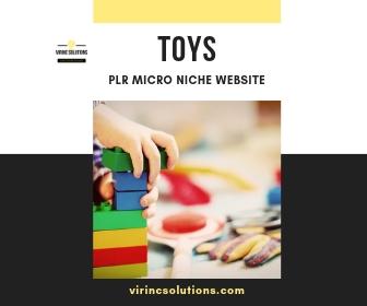 plr niche site for toys